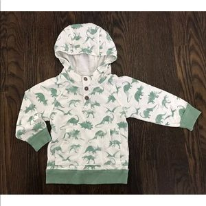 Genuine Kids from Oshkosh dinosaur hoodie size 18M